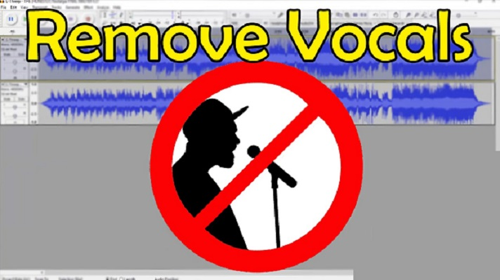 Personal and Professional Uses of Vocal Removing Software